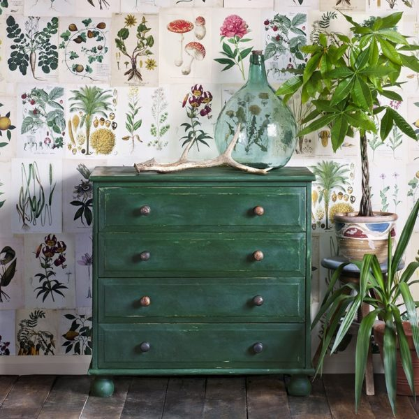 Botanical prints and Amsterdam green